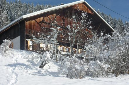 Apartment Pollen in chalet - 57 m² - 2 bedrooms - Renot Christine